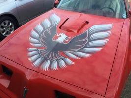 Pontiac Firebird Graphics