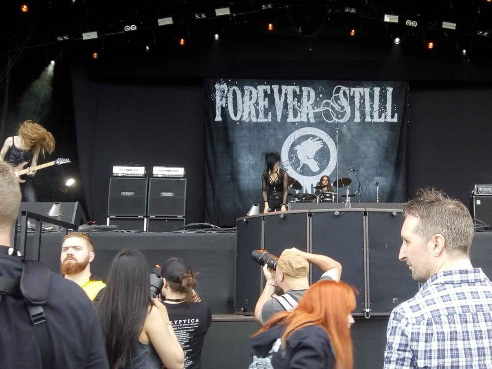 Forever Still Band Backdrop