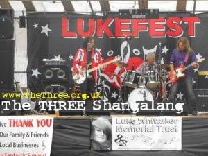Lukefest Charity Banner