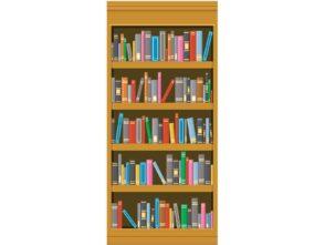 Bookcase 2 Exit Diversion Wrap
