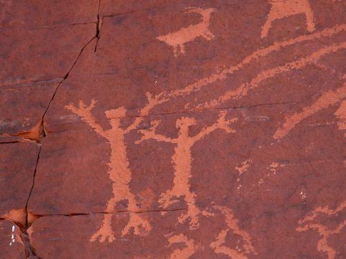 Prehistoric Wall Graphics